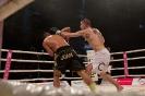 Steko's Fight Night in der Saturn Arena
